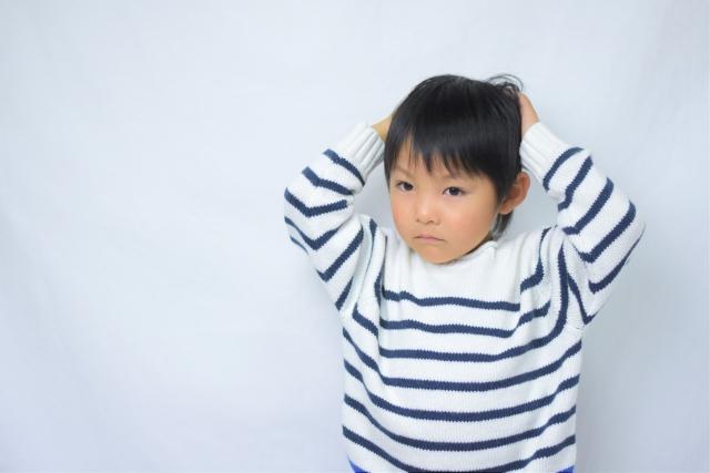 現役の幼児教室講師が考える。幼児教室の役割と、通信教育との比較。